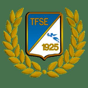 TFSE-Neumann